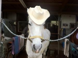 Cowboyhat